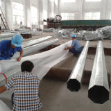 10m Galvanized and Powder Coated Electric Steel Post Pole