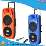Double 2X10 Inch Battery Speakers with 2 Woofer Bluetooth Light F73