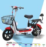 350W Electric Bicycle/Electric Motorcycle/E-Bike/	Electric Bike for Sale
