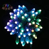 Pixel LED Lighting Chain Ws2811 1903 16703 2818 Pixel Light