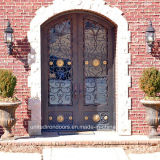 Decorative Arched Top Front Iron Entry Door (UID-D078)