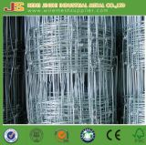 Cheaper Price Agricultural Fencing From Factory