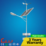 60W 8m Whole System Solar Wind LED Street Light