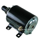 Tecumseh 33202 35763 35876 Lester 5749 Snowblower Engine DC Brushless Starter Motor