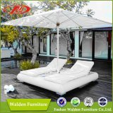 Outdoor Day Bed, Garden Sun Bed, Leisure Bed (DH-9564)