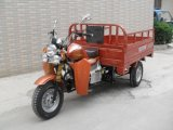 Wholesale Cheap 150cc 250cc Gas Motor Cargo Three Wheel Motorcycle
