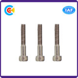 Stainless Steel M12/Hexagon Socket Knurled Cheese Head Screws for Furniture