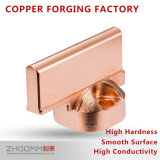 Precision Spare Part of Electrical/Electronic Products/Machical/Auto for Cold Extrusion of Profiled Copper Pieces