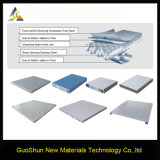 Competitive Price Decoration Material Aluminum Honeycomb Sandwich Panel