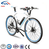 Light Weight Electric Bike with Competivie Price in Best Selling