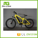 Powerful MTB Ebikes 48V 1000W MID Drive Motor E Bike Mountain Electric Bicycles