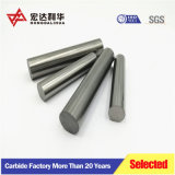 High Purity Raw Materials Carbide Rods with One Straight Hole