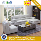 Home Sofa Wooden Frame Living Room Sofa (UL-NSC206)