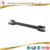 Rear Equilibration Clip Assembly for Sinotruck Howoa7 Truck Part (WG9925682128)