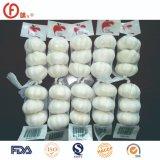 Good Price Prime Quality Fresh Pure White Garlic