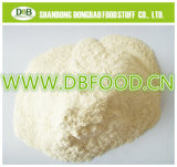 Organic Garlic Powder for Europe Market with Coi