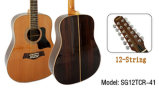 Aiersi Wholesale Musical Instruments 12 String Acoustic Electric Guitar