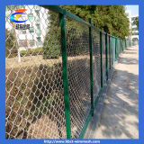 Wire Netting Coated Chain Link Fence