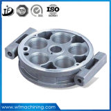 OEM Steel/Aluminum/Stainless Steel Machining with Colored Anodized Service