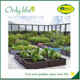 Onlylife Help Established More Quickly After Transplanting Grow Planter