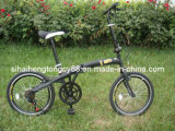 Folding Bicycle/Bike (FD-001)
