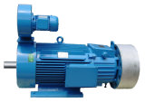 Hot Sale Three Phase Electric Motor with SGS