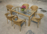 Commercial Rattan Outdoor Furniture Wicker Dining Set (DS-06054)