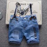 Summer Children Denim Shorts for Boy