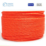 Homeuse Plastic PP Rope