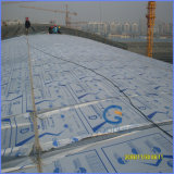 Twin-Wall Rectangular Structure Agrucultural Polycarbonare Sheet for Greenhouse