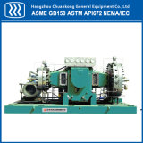 Cryogenic Industrial Gas Piston Compressor