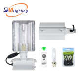 China Supplier Hydroponic Grow Light Kit 315W CMH Dimmable Electronic Ballast with 0-10V