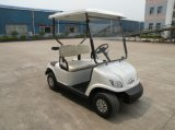 Best Popular Cheap Electric Mini Buggy Vehicle for Club