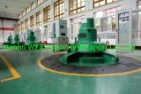 10~20MW Quality High Efficiency Pelton Turbine Generator