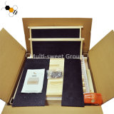 Wholesale Langstroth Bee Hive Kit Promotion Set Langstroth Beehive