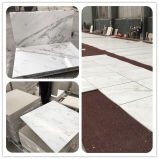 White Cararra Natural Stone Grey/Black/Beige Granite/Quartz/Travertine/Marble Floor/Wall/Flooring/Mosaic/Paving Slab/Tile for Project