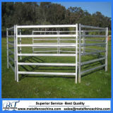 40X80mm Oval Pipe Cattle Livestock Corral Horse Yard Panel