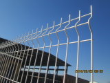 Galvanized Raw Material and Then PVC Painting Wire Mesh Fence
