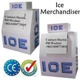 Single Slant Door Ice Freezer for Gas Station Use