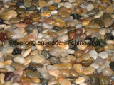 Natural Mixed Flat &Polished River Pebble with Mixed Colors
