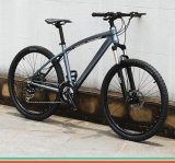 Good Quality and High Level Lowest Price of Alloy MTB Mountain Bike