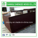 Construction Grade 18mm Brown Black Film Faced Plywood