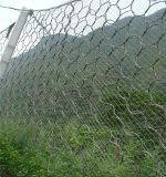 Steel Wire Rope Flexible Protective Netting (R-SNS)