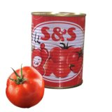 70g 210g 400g 2200g Canned Tomato Paste Africa