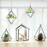 Simple Modern Geometric Glass Ornaments Living Room Balcony Micro Landscape Flower Decoration Decorative Metal Craft