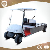 Zhejiang Factory Price Electric Vehicle Utility Car with Case