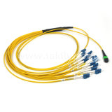 Single Mode MPO APC LC Upc 12 Fiber Sm Fiber MPO Cable Assembly