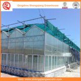 Flower/Fruit/Vegetables Growing Polycarbonate Sheet Greenhouse with Sunshade System
