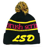 Export to Europe, Embroidered Knitted Cap Hat and Winter Beanie Cap