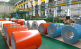 Color Coated Sheet in Coils SGLCC